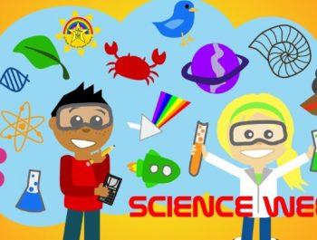 Science Week Fun